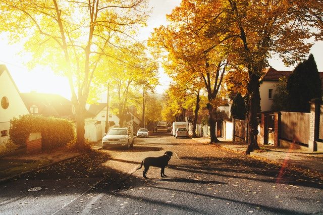7 Factors to Consider When Moving to a New Neighborhood